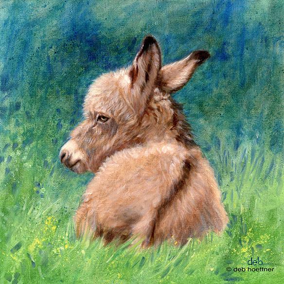 The Little Donkey, Deb Hoeffner