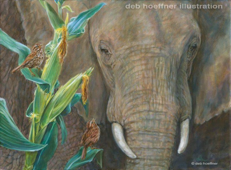 An Elephant's Eye, Deb Hoeffner