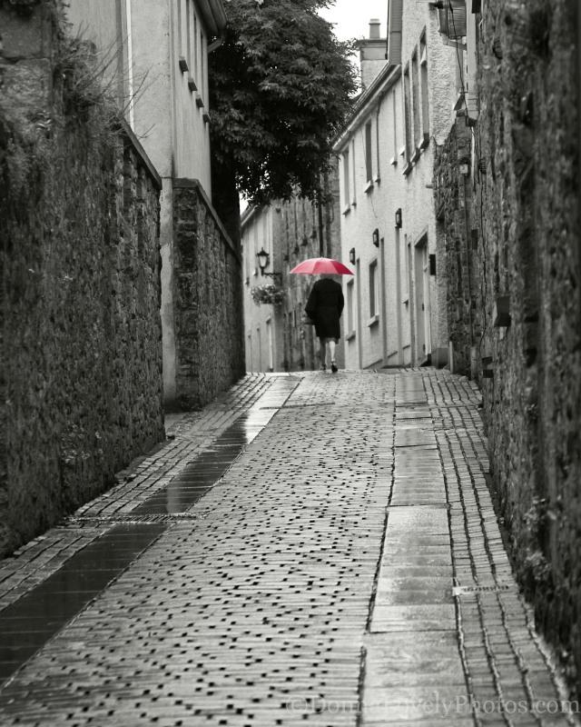 Irish Red Umbrella, Donna D. Lovely