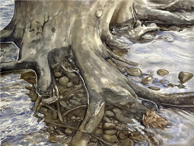 Roots, Donna McCafferty