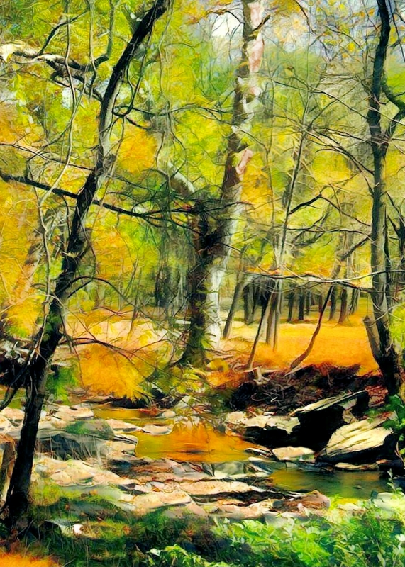 Autumn on the Tohickon Creek, Rodney Miller