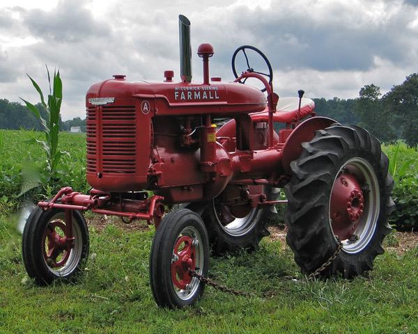 Farmall Tractor, Natalie Searl