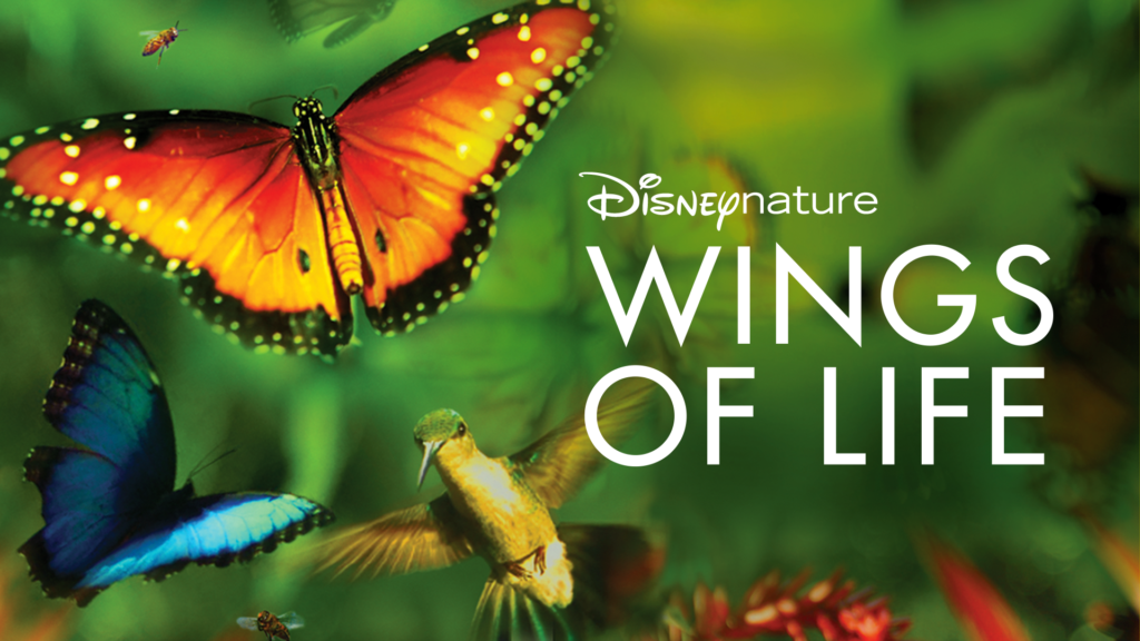 "ACME FILM CLUB EARTH DAY FAMILY EVENT FILM ""Wings of Life"": Saturday, April 24 at 10am"